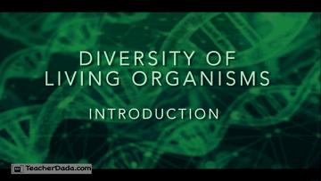 ISC Class 11 Biology: Diversity Of Living Organisms