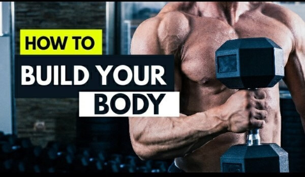 Learn Fundamental of Muscle Building